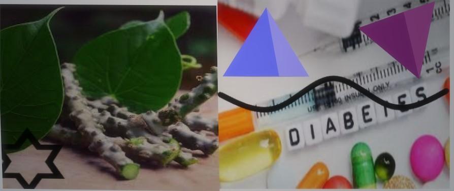 Diabetes And Giloy: Should Sugar Patients Take Giloy?