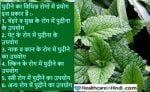Pudina in Hindi पुदीना के फायदे और उपयोग की विधि